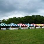 Frame Tents 20' x 30'